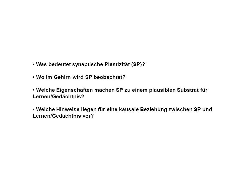 Was bedeutet synaptische Plastizität (SP)? Wo im Gehirn wird SP beobachtet? Welche Eigenschaften machen SP zu einem plausiblen Substrat für Lernen/Ged
