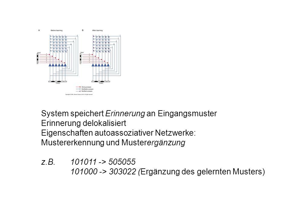 System speichert Erinnerung an Eingangsmuster Erinnerung delokalisiert Eigenschaften autoassoziativer Netzwerke: Mustererkennung und Musterergänzung z