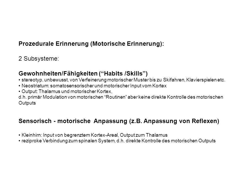 Prozedurale Erinnerung (Motorische Erinnerung): 2 Subsysteme: Gewohnheiten/Fähigkeiten (Habits /Skills) stereotyp, unbewusst, von Verfeinerung motorischer Muster bis zu Skifahren, Klavierspielen etc.