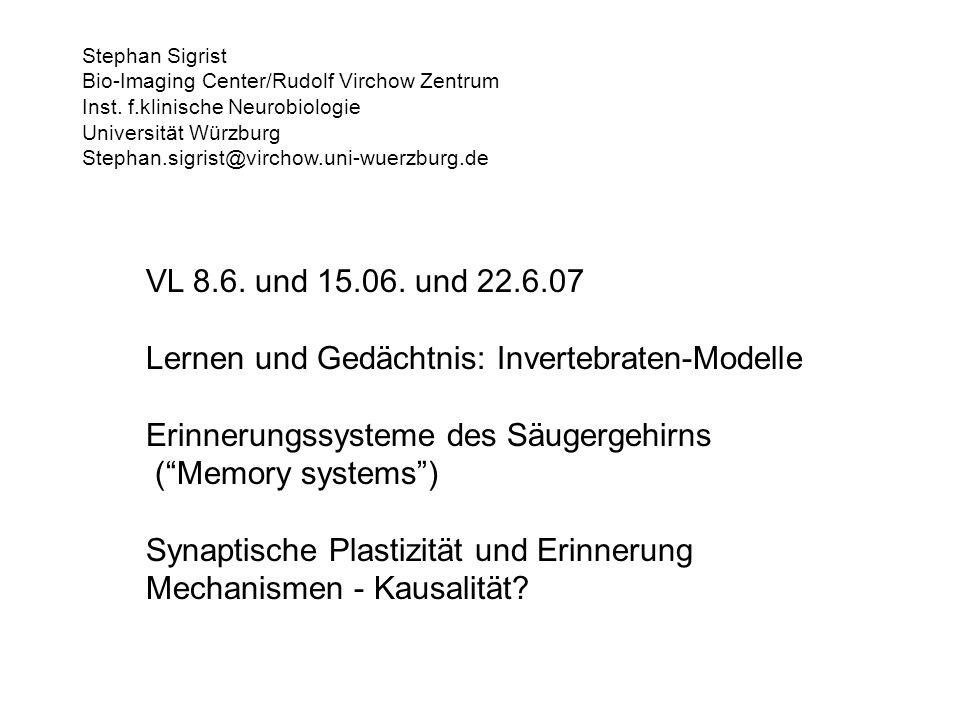 VL 8.6. und 15.06. und 22.6.07 Lernen und Gedächtnis: Invertebraten-Modelle Erinnerungssysteme des Säugergehirns (Memory systems) Synaptische Plastizi