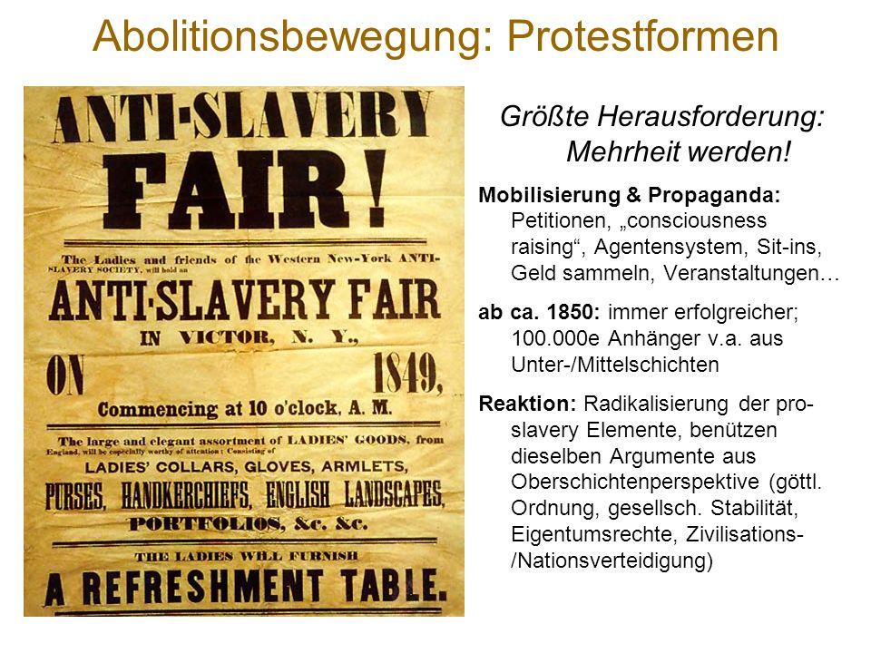 Abolitionsbewegung Organisationsformen & Strategien hochgradig / formell N-US & transatl. niederschwellig / informell S-US Lokale, regionale, national