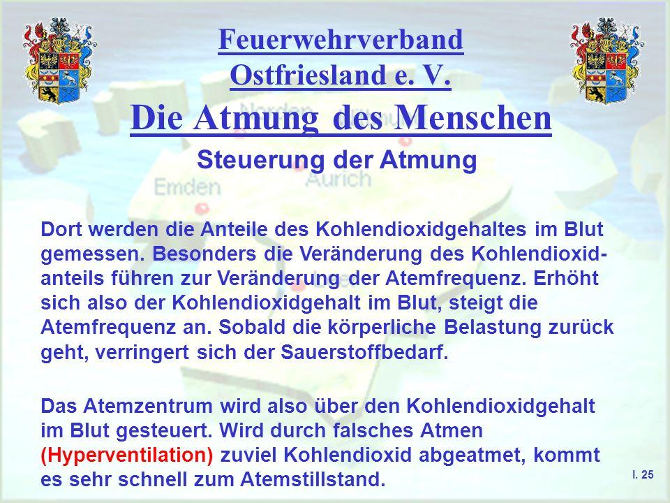 Feuerwehrverband Ostfriesland e. V. Die Atmung des Menschen I. 25 Steuerung der Atmung Dort werden die Anteile des Kohlendioxidgehaltes im Blut gemess