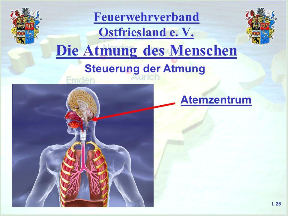 Feuerwehrverband Ostfriesland e. V. Die Atmung des Menschen I. 26 Steuerung der Atmung Atemzentrum