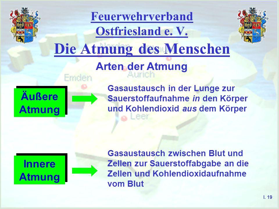 Feuerwehrverband Ostfriesland e. V. Die Atmung des Menschen I. 19 Arten der Atmung Äußere Atmung Gasaustausch in der Lunge zur Sauerstoffaufnahme in d