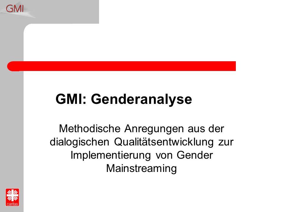 GMI: Genderanalyse Methodische Anregungen aus der dialogischen Qualitätsentwicklung zur Implementierung von Gender Mainstreaming