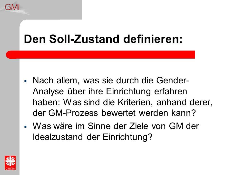 Den Soll-Zustand definieren: Nach allem, was sie durch die Gender- Analyse über ihre Einrichtung erfahren haben: Was sind die Kriterien, anhand derer,