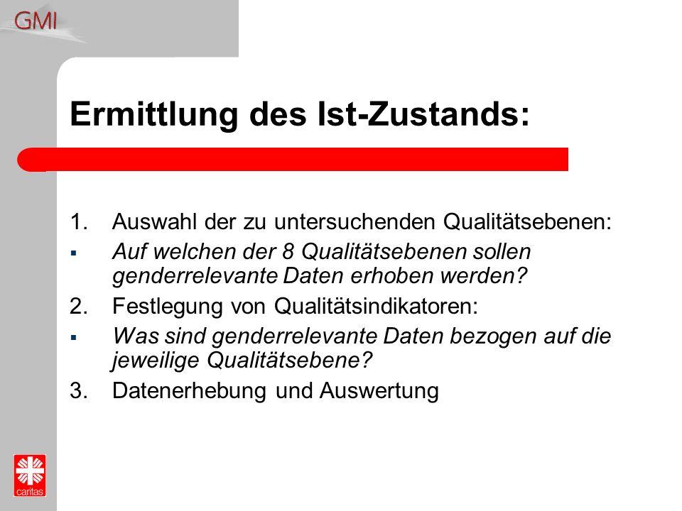 Ermittlung des Ist-Zustands: 1.Auswahl der zu untersuchenden Qualitätsebenen: Auf welchen der 8 Qualitätsebenen sollen genderrelevante Daten erhoben w