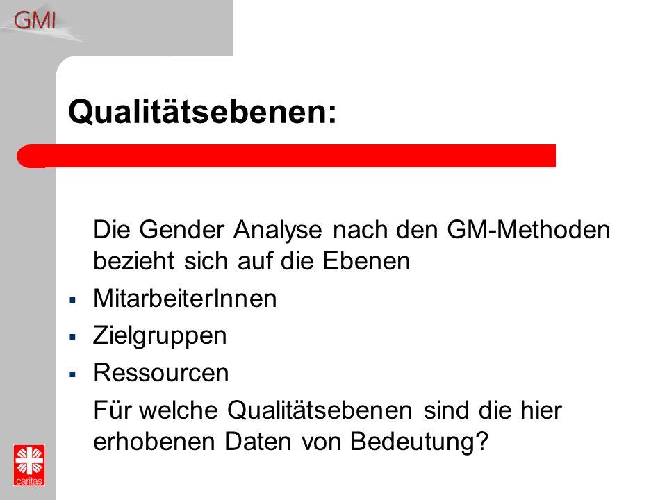 Qualitätsebenen: Die Gender Analyse nach den GM-Methoden bezieht sich auf die Ebenen MitarbeiterInnen Zielgruppen Ressourcen Für welche Qualitätsebene