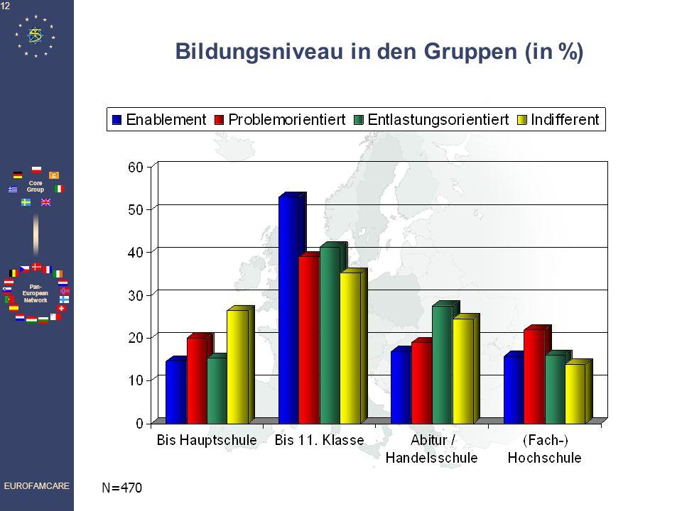 Pan- European Network Core Group EUROFAMCARE 12 Bildungsniveau in den Gruppen (in %) N=470
