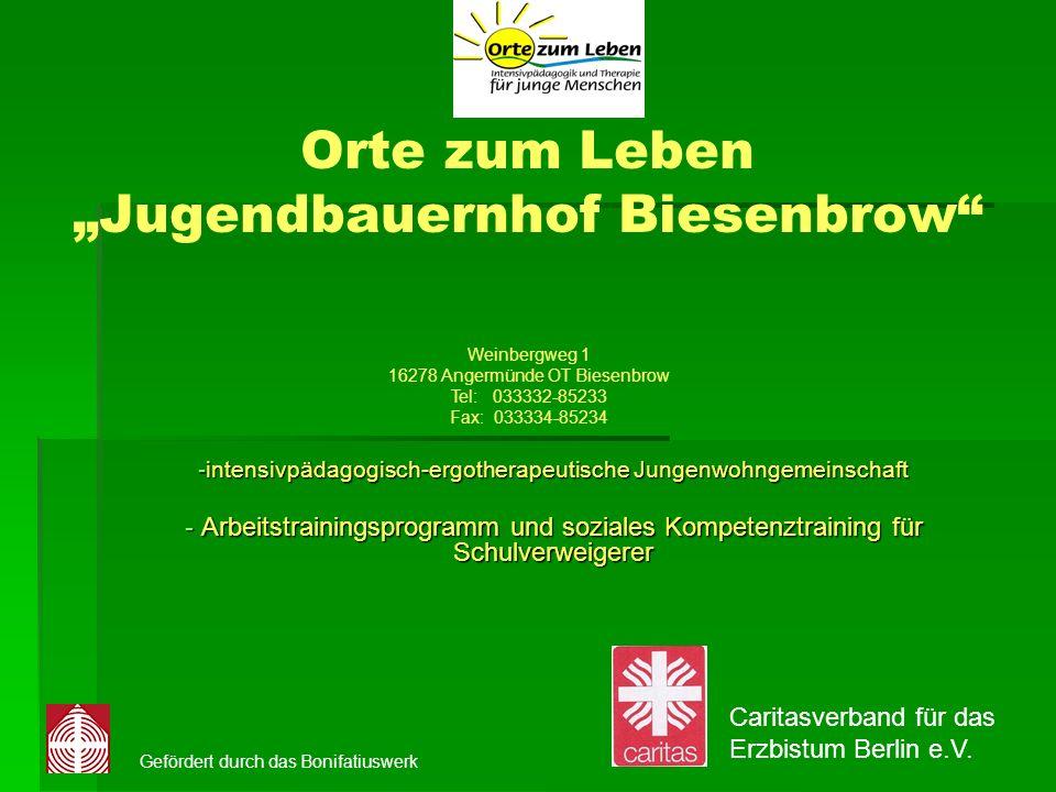 Orte zum Leben Jugendbauernhof Biesenbrow -intensivpädagogisch-ergotherapeutische Jungenwohngemeinschaft - Arbeitstrainingsprogramm und soziales Kompe