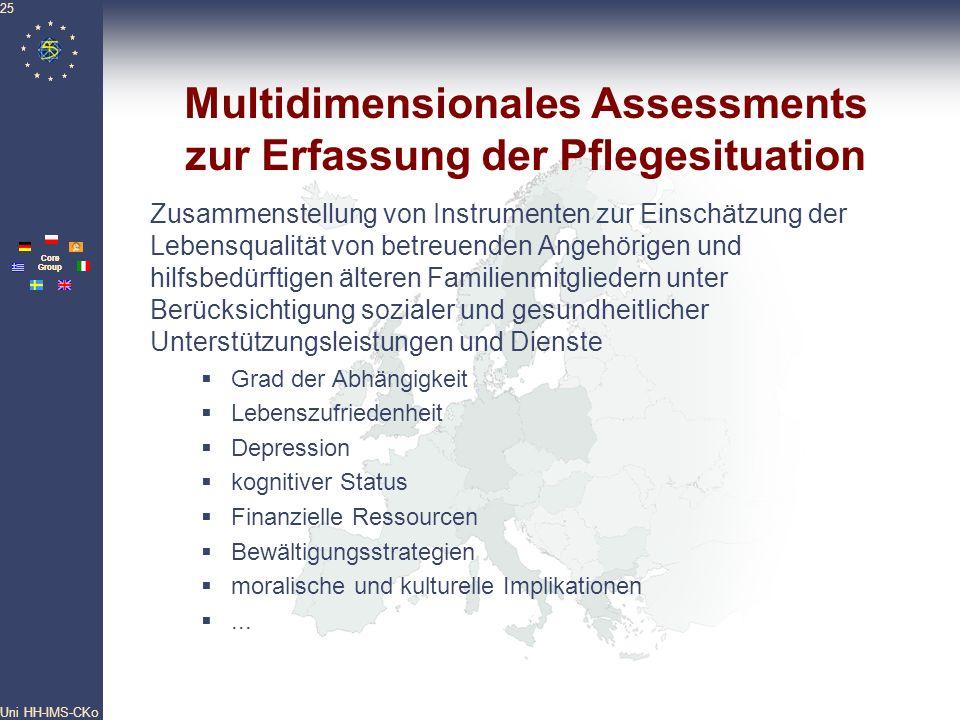 Pan- European Network Core Group Uni HH-IMS-CKo 25 Multidimensionales Assessments zur Erfassung der Pflegesituation Zusammenstellung von Instrumenten