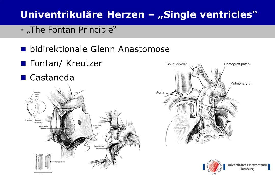Sinusrhythmus geeignete venöse Anatomie niedriger Lungengefäßwiderstand normale Ventrikelfunktion keine AV-Klappeninsuffizienz hinreichende Pulmonalar