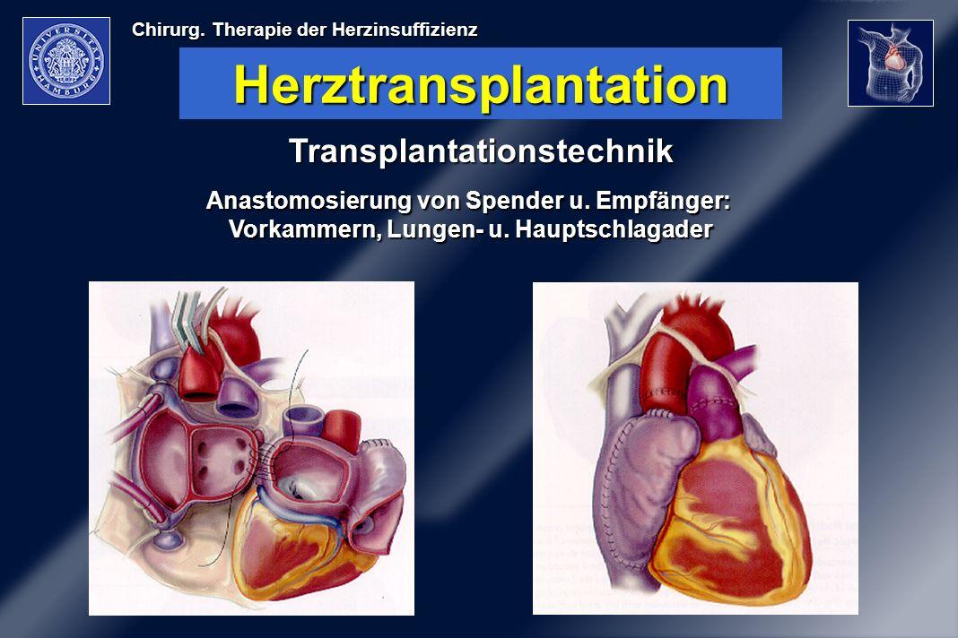 Chirurg. Therapie der Herzinsuffizienz Herztransplantation Transplantationstechnik Anastomosierung von Spender u. Empfänger: Vorkammern, Lungen- u. Ha