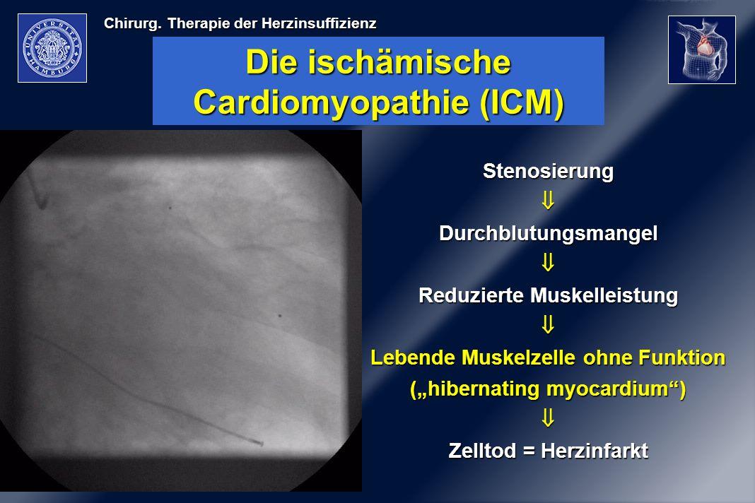 Chirurg. Therapie der Herzinsuffizienz Die ischämische Cardiomyopathie (ICM) StenosierungDurchblutungsmangel Reduzierte Muskelleistung Lebende Muskelz
