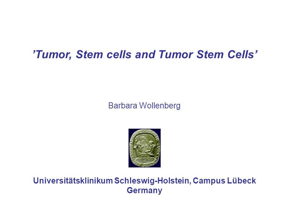 Theories of Tumor Development Stochastic Model Hierarchic Model (Tumor stem cell-Hypothesis) Stochastic ModelHierarchic Model Tumor-initiating cell Differentiated Tumor cell Tumor Precursor cell UK-SH - ENT Lübeck
