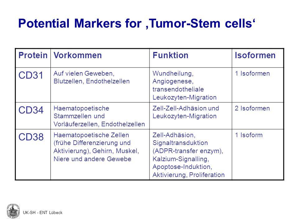 ProteinVorkommenFunktionIsoformen CD44 Haematopoetische und Nicht- Haematopoetische Zellen Hyaluronsäure-Bindung, Lymphozyten-Homing und -Aktivierung, Mindestens 20 Isoformen CD59 Weite Verbreitung auf Zellen aller Gewebe Inhibition der Zelllyse durch Membranangriffs- Komplex, T-Zell- Aktivierung Mindestens 4 Isoformen CD117 Haematopoetische Stammzellen und Vorläuferzellen Wachstumsfaktor- Rezeptor; Zellerhalt, Proliferation, Differenzierung, Mobilisation 4 Isoformen CD133 Haematopoetische Stammzellen und Vorläuferzellen, entwickelndes Epithel, neurale und endotheliale Stammzellen Unbekannt1 Isoform UK-SH - ENT Lübeck Potential Markers for Tumor-Stem cells