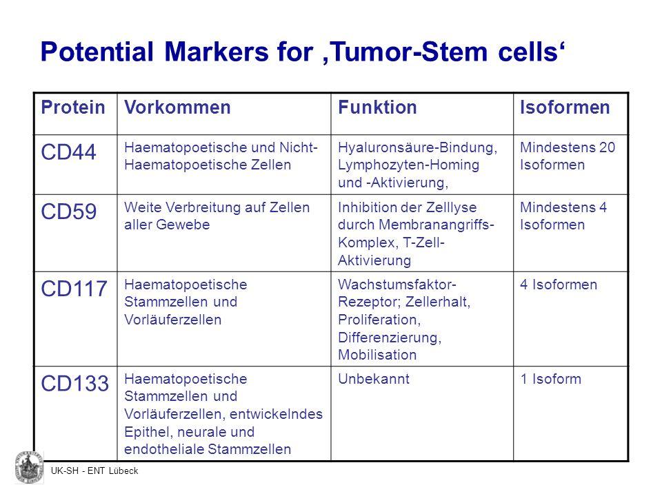 ProteinVorkommenFunktionIsoformen CD44 Haematopoetische und Nicht- Haematopoetische Zellen Hyaluronsäure-Bindung, Lymphozyten-Homing und -Aktivierung,