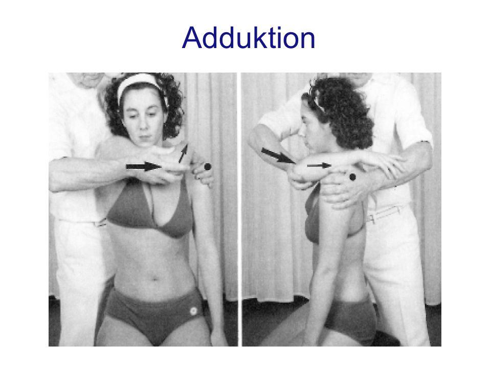 Adduktion