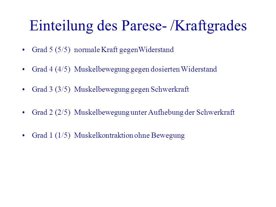 Einteilung des Parese- /Kraftgrades Grad 5 (5/5)normale Kraft gegenWiderstand Grad 4 (4/5)Muskelbewegung gegen dosierten Widerstand Grad 3 (3/5)Muskel
