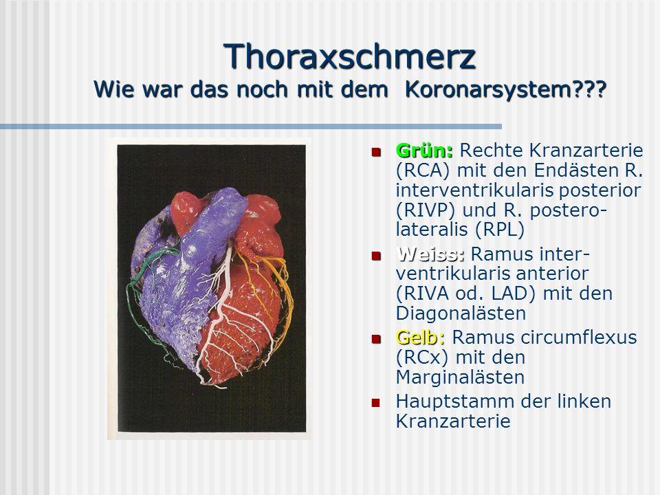 """Pr�sentation """"Thoraxschmerz Prof. Dr. Dr. V. D�ring Universit�res ..."""