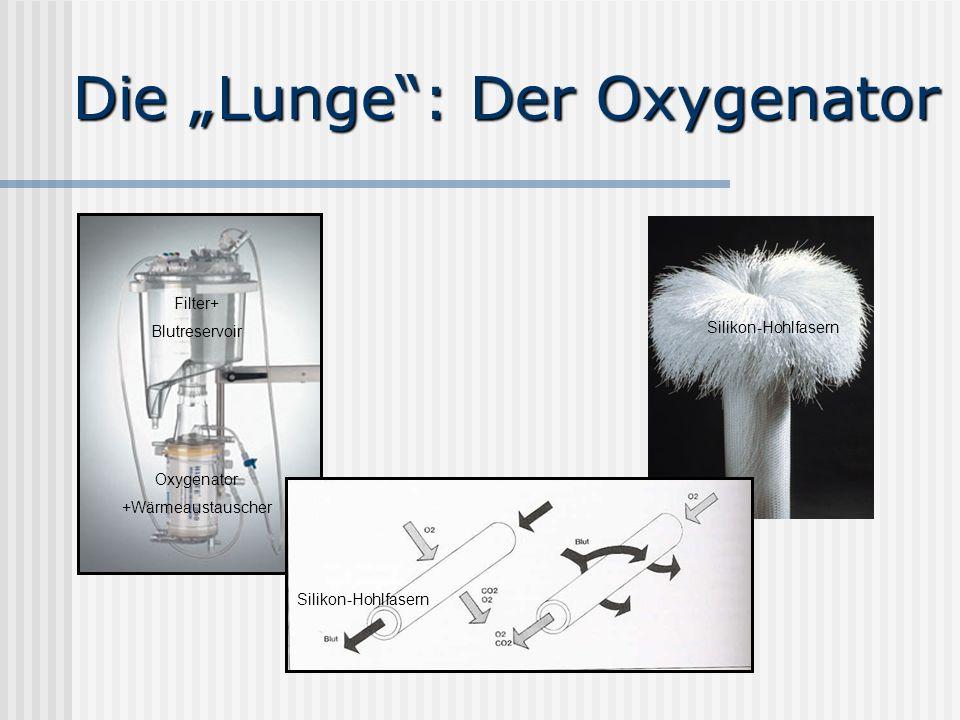 Die Lunge: Der Oxygenator Silikon-Hohlfasern Filter+ Blutreservoir Silikon-Hohlfasern Oxygenator +Wärmeaustauscher
