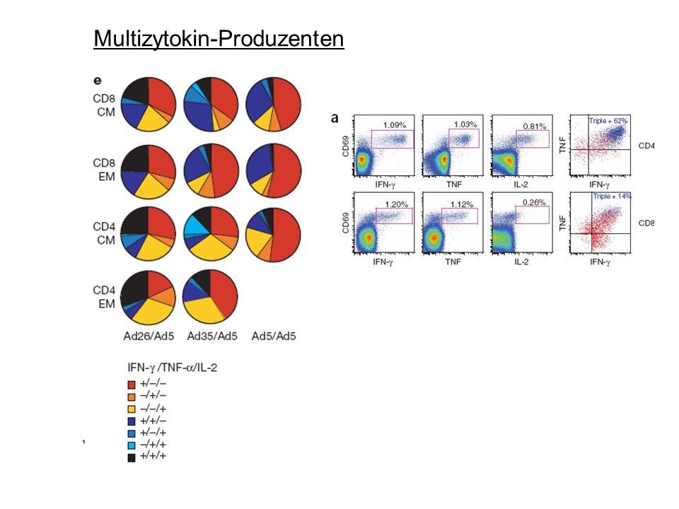 Multizytokin-Produzenten