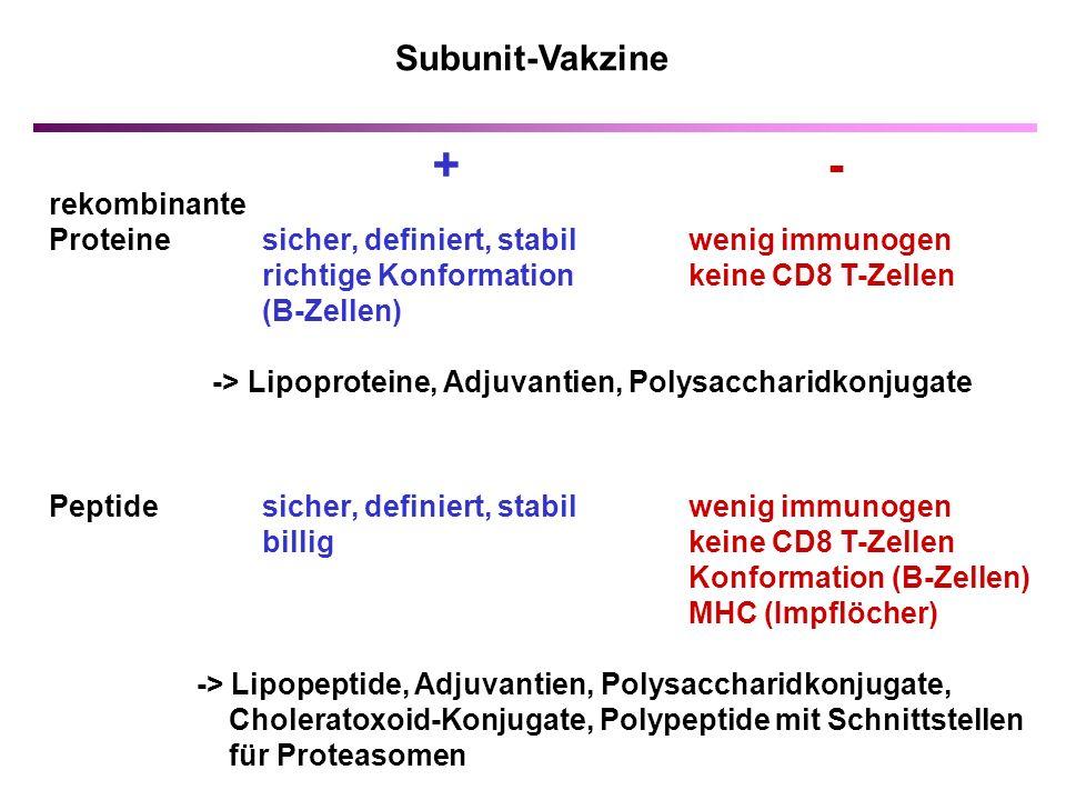 rekombinante Proteinesicher, definiert, stabilwenig immunogen richtige Konformation keine CD8 T-Zellen (B-Zellen) -> Lipoproteine, Adjuvantien, Polysaccharidkonjugate Peptide sicher, definiert, stabil wenig immunogen billig keine CD8 T-Zellen Konformation (B-Zellen) MHC (Impflöcher) -> Lipopeptide, Adjuvantien, Polysaccharidkonjugate, Choleratoxoid-Konjugate, Polypeptide mit Schnittstellen für Proteasomen Subunit-Vakzine + -