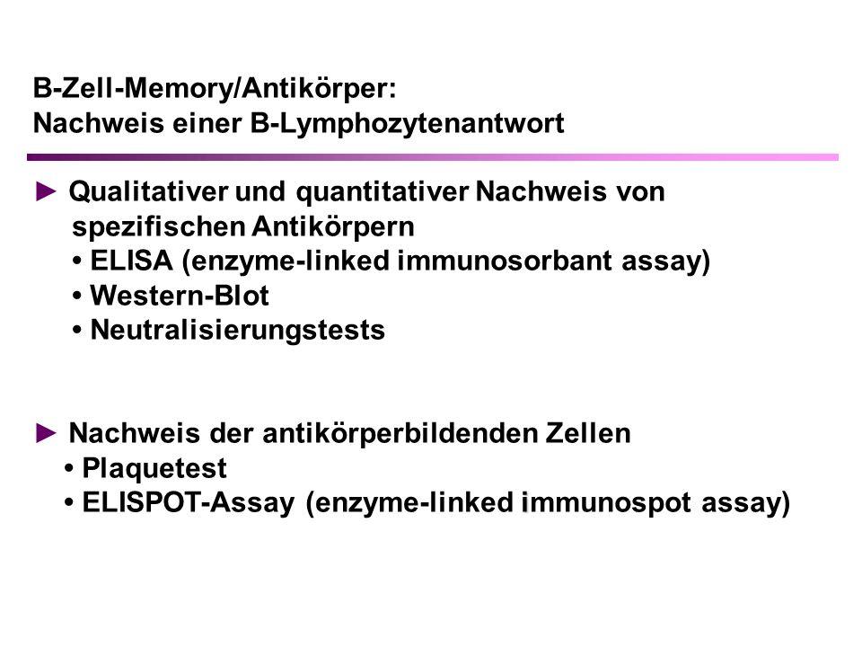 B-Zell-Memory/Antikörper: Nachweis einer B-Lymphozytenantwort Qualitativer und quantitativer Nachweis von spezifischen Antikörpern ELISA (enzyme-linked immunosorbant assay) Western-Blot Neutralisierungstests Nachweis der antikörperbildenden Zellen Plaquetest i ELISPOT-Assay (enzyme-linked immunospot assay)
