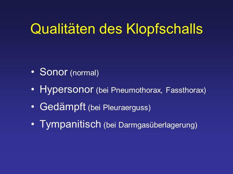 Qualitäten des Klopfschalls Sonor (normal) Hypersonor (bei Pneumothorax, Fassthorax) Gedämpft (bei Pleuraerguss) Tympanitisch (bei Darmgasüberlagerung)