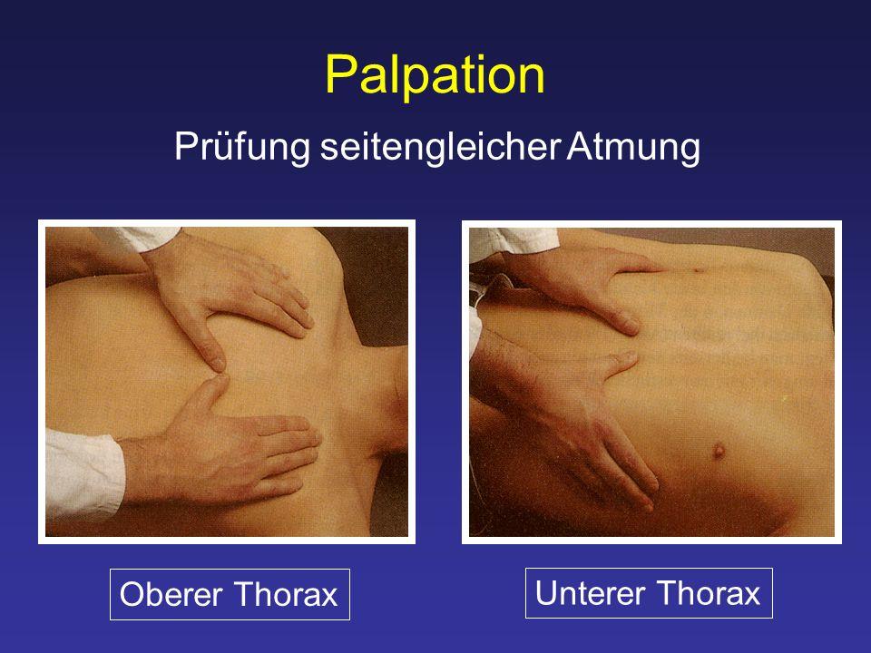 Palpation Prüfung seitengleicher Atmung Oberer Thorax Unterer Thorax