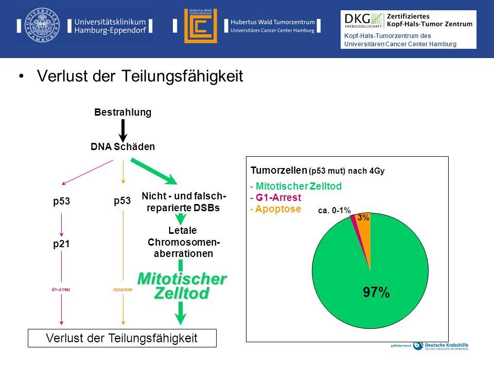 Medikamentöse Tumortherapie der Kopf-, Hals-Tumoren Kopf-Hals-Tumorzentrum des Universitären Cancer Center Hamburg Verlust der Teilungsfähigkeit Nicht