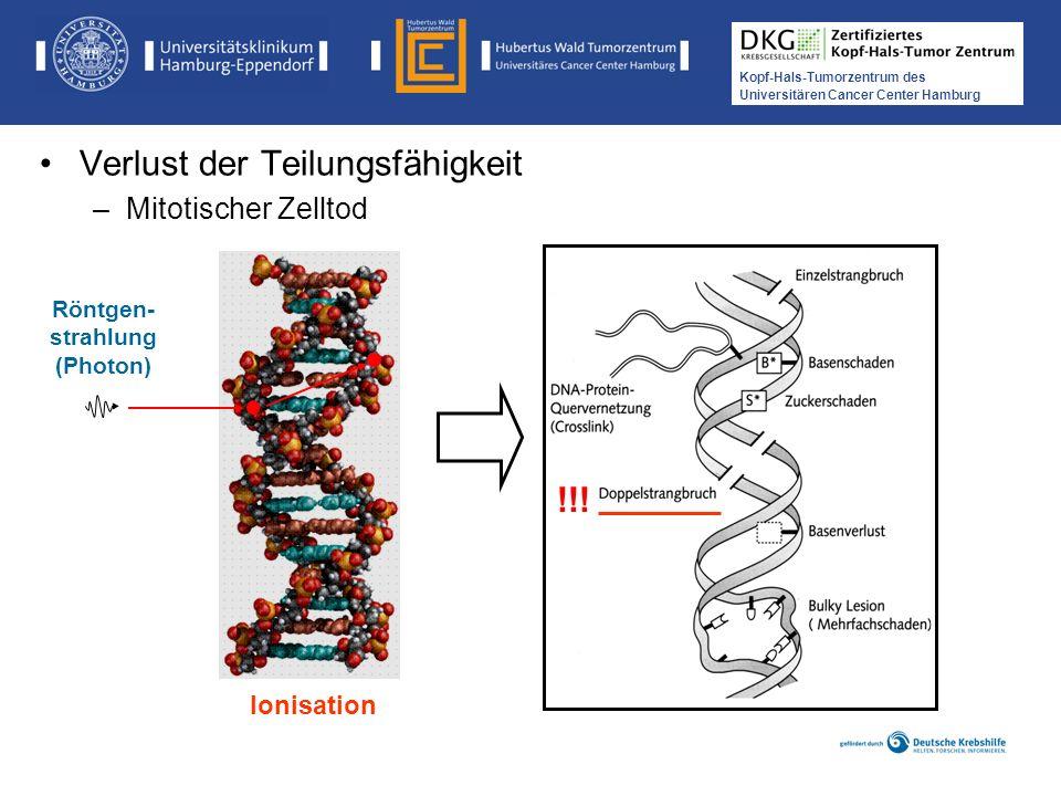 Medikamentöse Tumortherapie der Kopf-, Hals-Tumoren Kopf-Hals-Tumorzentrum des Universitären Cancer Center Hamburg Röntgen- strahlung (Photon) Ionisat