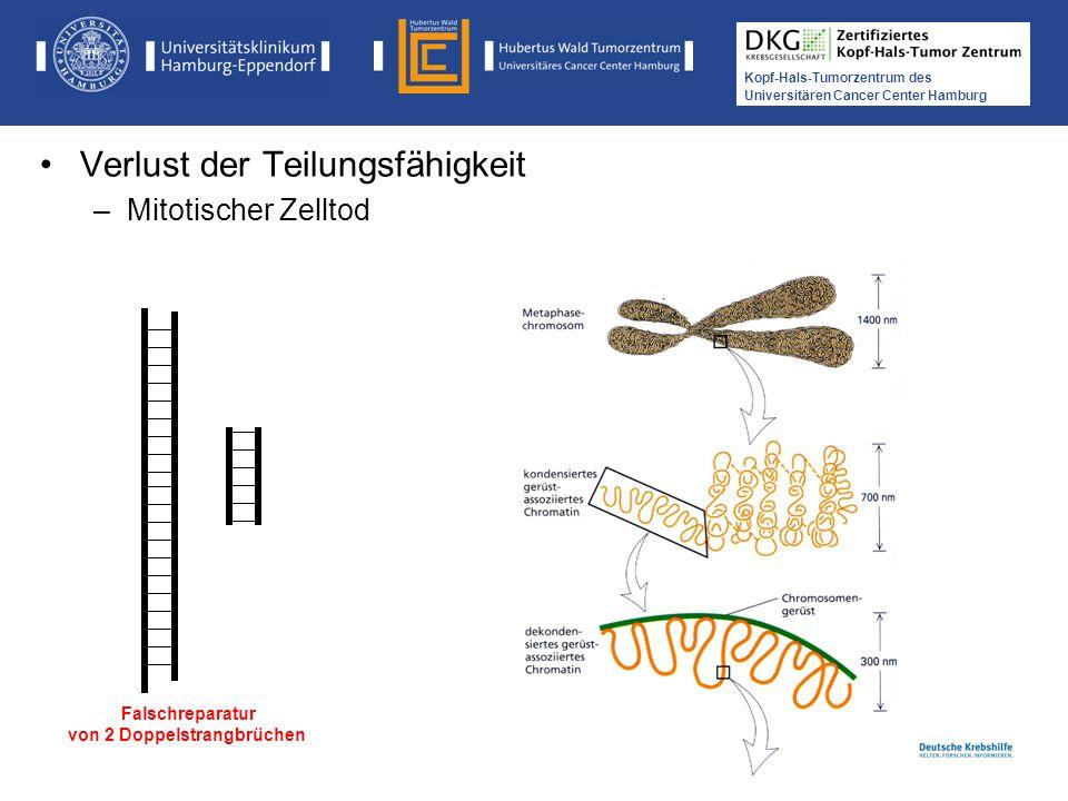Medikamentöse Tumortherapie der Kopf-, Hals-Tumoren Kopf-Hals-Tumorzentrum des Universitären Cancer Center Hamburg Falschreparatur von 2 Doppelstrangb