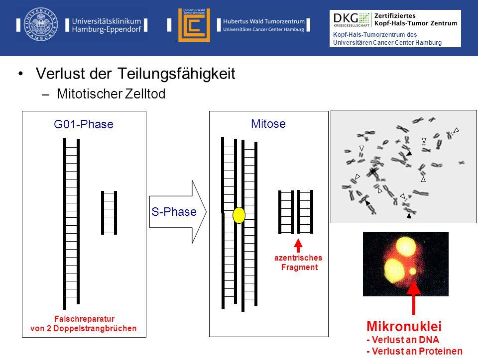 Medikamentöse Tumortherapie der Kopf-, Hals-Tumoren Kopf-Hals-Tumorzentrum des Universitären Cancer Center Hamburg G01-Phase Falschreparatur von 2 Dop