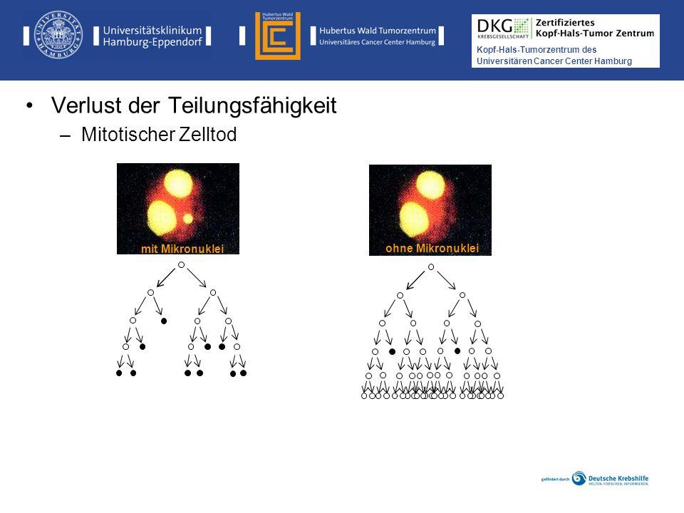 Medikamentöse Tumortherapie der Kopf-, Hals-Tumoren Kopf-Hals-Tumorzentrum des Universitären Cancer Center Hamburg mit Mikronuklei ohne Mikronuklei Ve