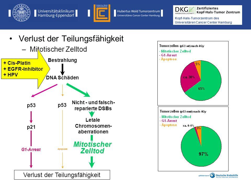 Medikamentöse Tumortherapie der Kopf-, Hals-Tumoren Kopf-Hals-Tumorzentrum des Universitären Cancer Center Hamburg Verlust der Teilungsfähigkeit –Mito