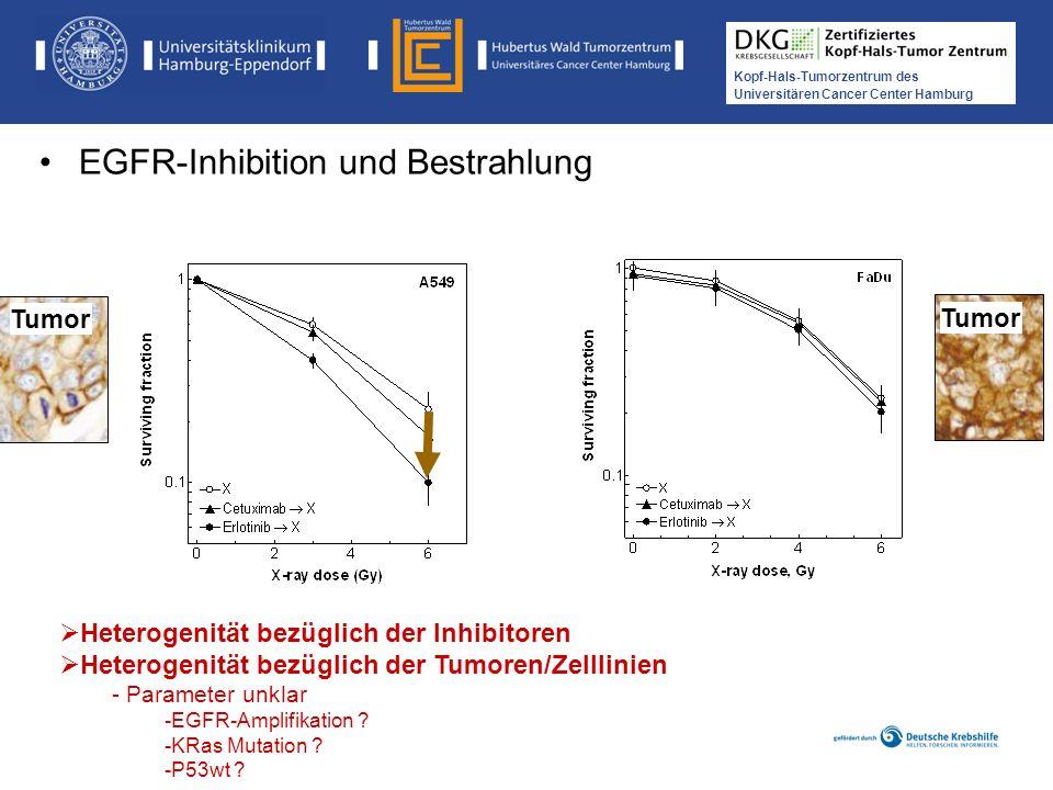 Medikamentöse Tumortherapie der Kopf-, Hals-Tumoren Kopf-Hals-Tumorzentrum des Universitären Cancer Center Hamburg Tumor Heterogenität bezüglich der I