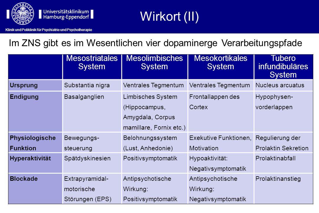 Wirkort (II) Klinik und Poliklinik für Psychiatrie und Psychotherapie Mesostriatales System Mesolimbisches System Mesokortikales System Tubero infundi