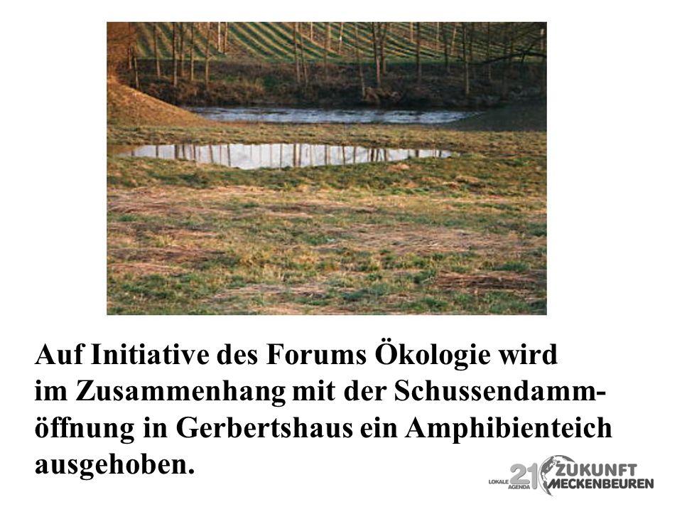 Auf Initiative des Forums Ökologie wird im Zusammenhang mit der Schussendamm- öffnung in Gerbertshaus ein Amphibienteich ausgehoben.