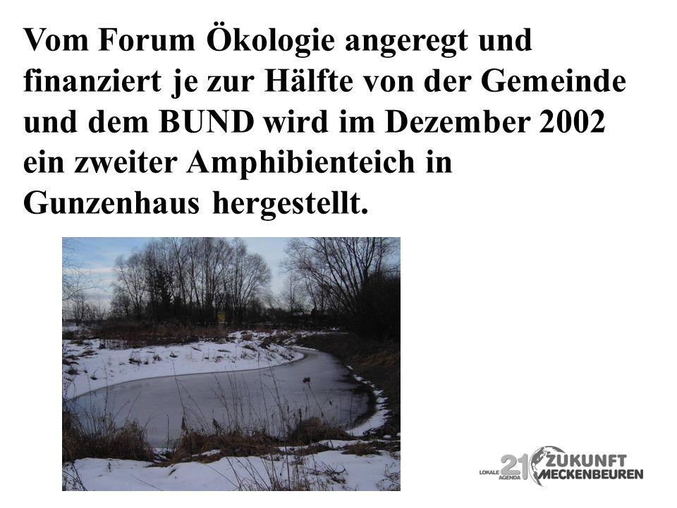 Vom Forum Ökologie angeregt und finanziert je zur Hälfte von der Gemeinde und dem BUND wird im Dezember 2002 ein zweiter Amphibienteich in Gunzenhaus
