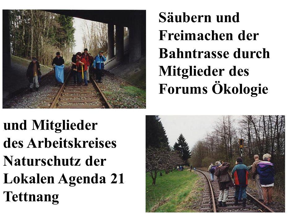 Säubern und Freimachen der Bahntrasse durch Mitglieder des Forums Ökologie und Mitglieder des Arbeitskreises Naturschutz der Lokalen Agenda 21 Tettnan