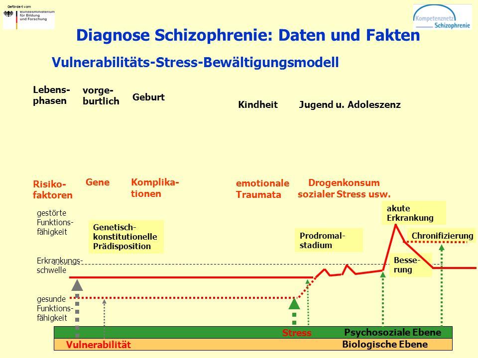 Gefördert vom Diagnose Schizophrenie: Daten und Fakten vorge- burtlich Gene Biologische Ebene Psychosoziale Ebene Genetisch- konstitutionelle Prädispo