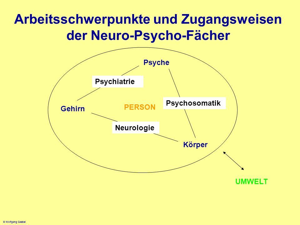 © Wolfgang Gaebel Arbeitsschwerpunkte und Zugangsweisen der Neuro-Psycho-Fächer Gehirn Psyche Körper Psychiatrie Psychosomatik Neurologie PERSON UMWEL