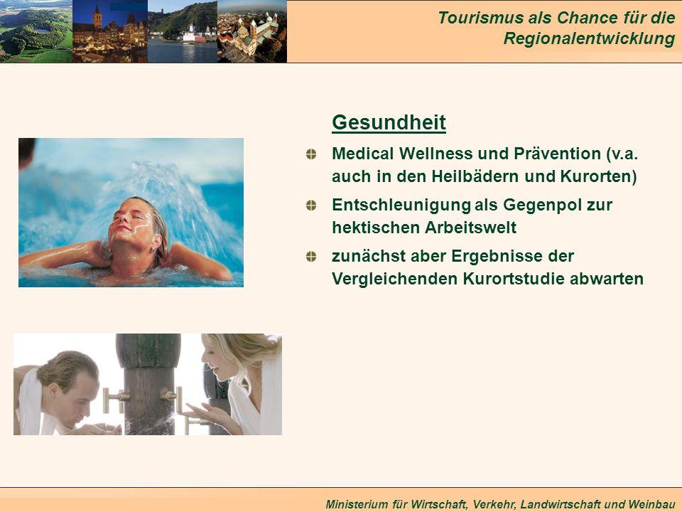 Tourismus als Chance für die Regionalentwicklung Ministerium für Wirtschaft, Verkehr, Landwirtschaft und Weinbau Gesundheit Medical Wellness und Präve