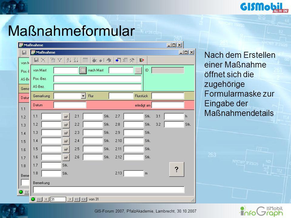 Maßnahmeformular Nach dem Erstellen einer Maßnahme öffnet sich die zugehörige Formularmaske zur Eingabe der Maßnahmendetails GIS-Forum 2007, PfalzAkad
