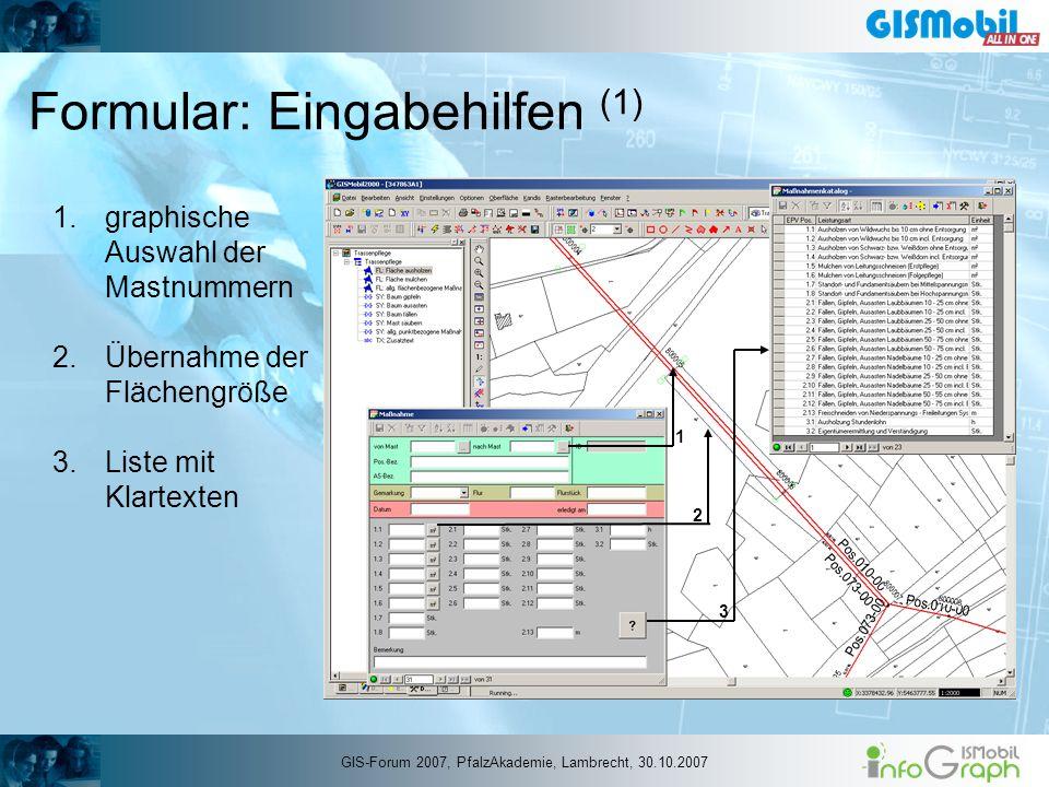 Formular: Eingabehilfen (1) 1.graphische Auswahl der Mastnummern 2.Übernahme der Flächengröße 3.Liste mit Klartexten 1 2 3 GIS-Forum 2007, PfalzAkadem