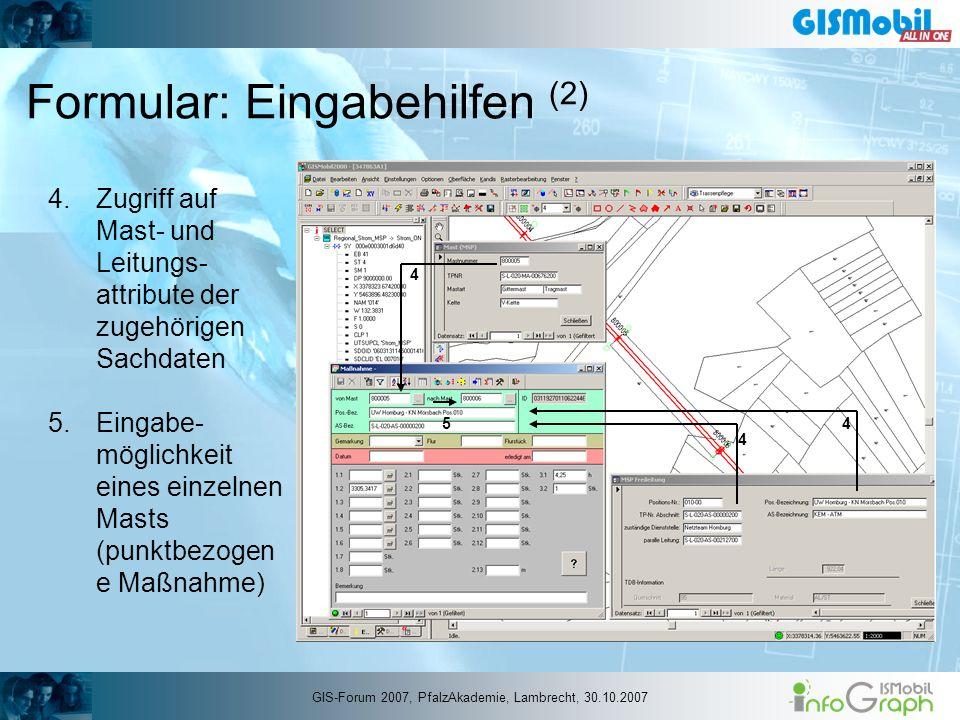 Formular: Eingabehilfen (2) 4.Zugriff auf Mast- und Leitungs- attribute der zugehörigen Sachdaten 5.Eingabe- möglichkeit eines einzelnen Masts (punktb