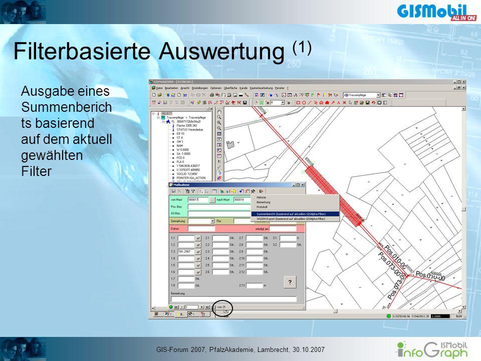 Filterbasierte Auswertung (1) Ausgabe eines Summenberich ts basierend auf dem aktuell gewählten Filter GIS-Forum 2007, PfalzAkademie, Lambrecht, 30.10