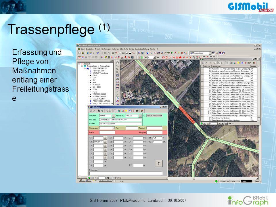 Trassenpflege (1) Erfassung und Pflege von Maßnahmen entlang einer Freileitungstrass e GIS-Forum 2007, PfalzAkademie, Lambrecht, 30.10.2007