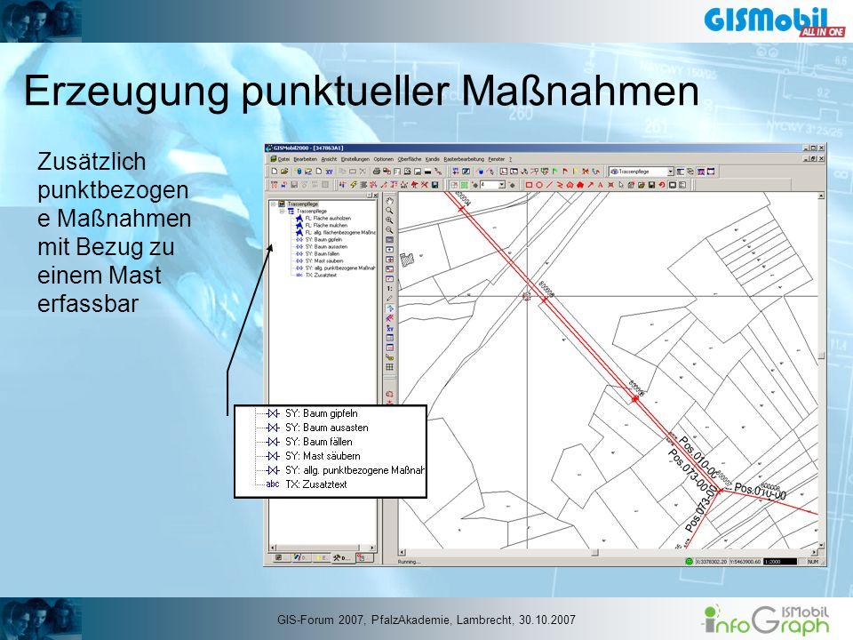 Erzeugung punktueller Maßnahmen Zusätzlich punktbezogen e Maßnahmen mit Bezug zu einem Mast erfassbar GIS-Forum 2007, PfalzAkademie, Lambrecht, 30.10.